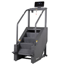 Stepper inSPORTline ProfiStair Lite