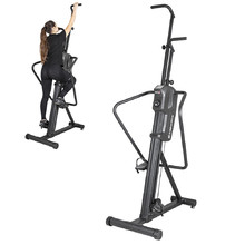 Stepper inSPORTline Verticon Home